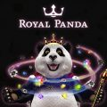 Enjoy online casino games at Royal panda